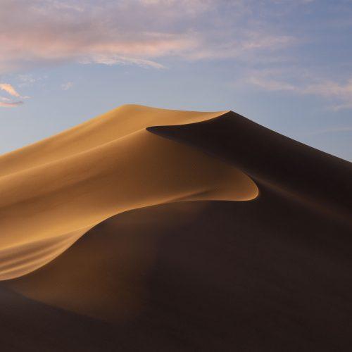 弊社取り扱い製品 MacOS Mojave (10.14) 対応状況