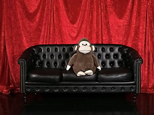 Studio Monkeyの画像4