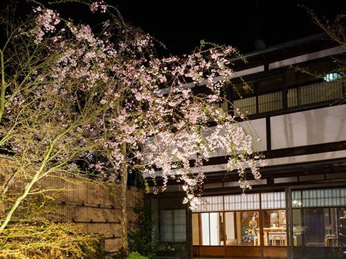 日本庭園付き町家の画像3