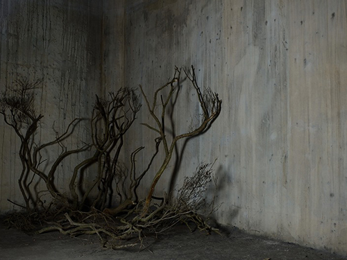 MaaStudio-Grayの画像1