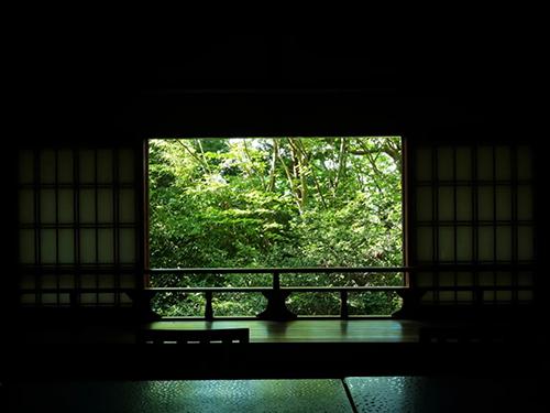奈良百楽荘・さつきの画像3