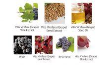 AROMA KIFI Moits & Airy Treatment - Geranium & Ylang Ylang