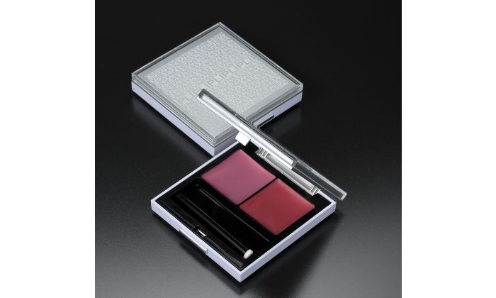 WILL LIP Color - VNESS