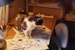 (C)2015杉作・実業之日本社/「猫なんかよんでもこない。」製作委員会