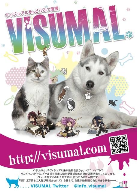 ヴィジュアル系×動物保護!?社会貢献に革命を!VISUMALの中村さんにインタビュー!の画像