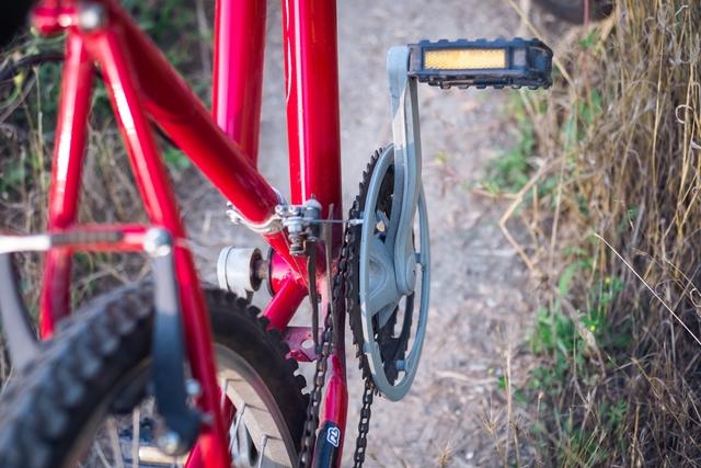 陽 の あたる 坂道 を 自転車 で 駆け のぼる