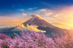 2020 東京奧運籌備會公告賽會前之永續發展報告