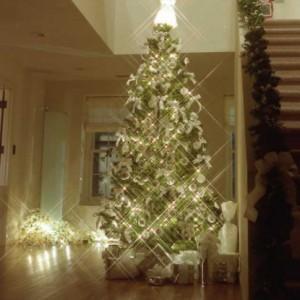 300MHホールクリスマス