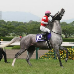 三冠馬のアイコン