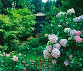 画像:6月 岩船寺(京都) 庭・四季詩情 2017年版カレンダー