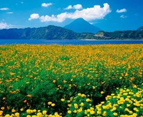 画像:7-8月 池田湖と開聞岳(鹿児島) 四季彩峰 2017年版カレンダー