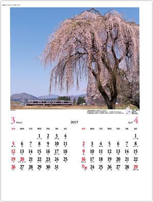 画像:田沢湖線と桜の写真/3-4月 月表 ローカル線紀行 2017年版カレンダー