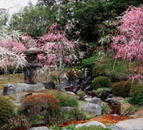 画像:3月 城南宮(京都) 庭の詩情 2017年版カレンダー