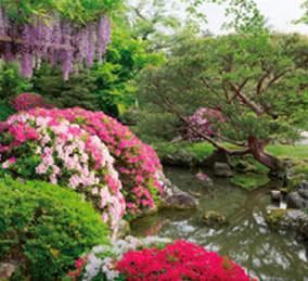 画像:5月 楽水苑(京都) 庭の詩情 2017年版カレンダー