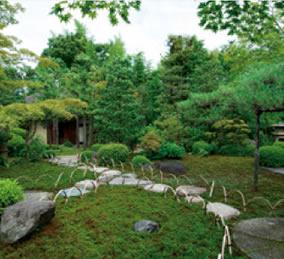 画像:7月 松華堂庭園(京都) 庭の詩情 2017年版カレンダー