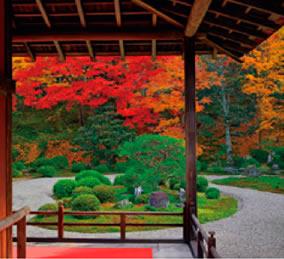 画像:11月 曼殊院(京都) 庭の詩情 2017年版カレンダー