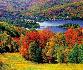 画像:写真「カナダのローレンシャン高原の色づく楓(メープル)」/9-10月 世界の名勝(フィルムカレンダー・小) 2017年版カレンダー