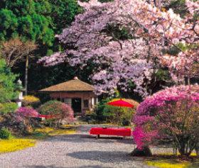 画像:3-4月 白龍園(京都) 四季の庭 2018年カレンダー