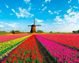 画像:3-4月 オランダ ヨーロッパ 2018年カレンダー
