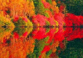 画像:9-10月 Pure~癒しの日本風景 2018年カレンダー