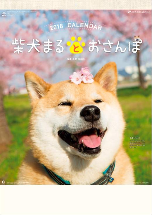 表紙 柴犬まるとおさんぽ 2018年カレンダーの画像