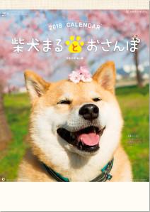 柴犬まるとおさんぽ 2018年カレンダー