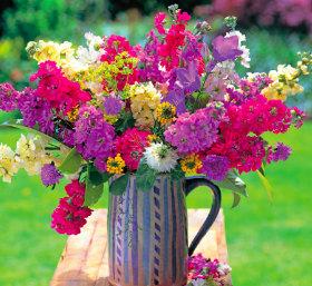 画像:7-8月 花の贈り物 2018年カレンダー
