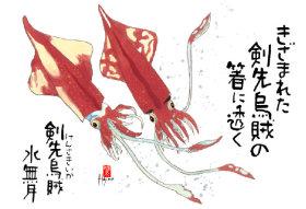 画像:6月 魚彩時記 2018年カレンダー