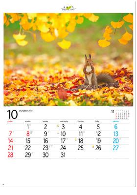 画像:10月 北海道 音更町 フォーエバージャパン 2018年カレンダー