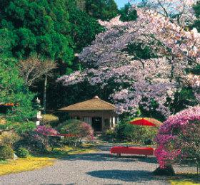 画像:3-4月 白龍園(京都) 庭(フィルムカレンダー) 2018年カレンダー
