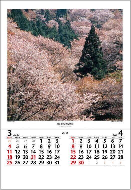 画像:3-4月 千本桜花盛り(奈良県 吉野町) 四季・前田真三(フィルムカレンダー) 2018年カレンダー