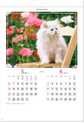 画像:5-6月 チンチラシルバー マイスウィーティーキャット 2018年カレンダー