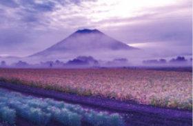 画像:9月 蝦夷富士 羊蹄山(北海道) ご当地富士 2018年カレンダー