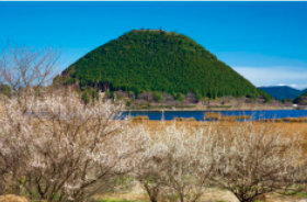 画像:3月 藺牟田富士 飯森山(鹿児島) ご当地富士 2018年カレンダー