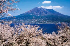 画像:4月 筑紫富士 桜島御岳(鹿児島) ご当地富士 2018年カレンダー