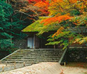 画像:11月 法然院(京都) 庭・四季詩情 2018年カレンダー