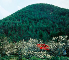 画像:2月 しょうざん(京都) 庭・四季詩情 2018年カレンダー