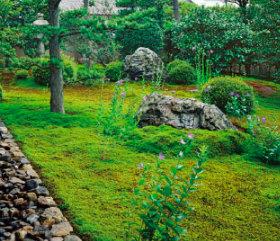 画像:8月 天得院(京都) 庭・四季詩情 2018年カレンダー