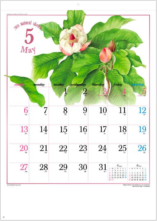 画像:5月 ウケザキオオヤマレンゲ ナチュラルスケッチ 2018年カレンダー