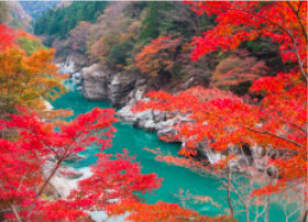画像:11月 祖谷渓(徳島) 四季水景 2018年カレンダー