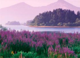 画像:7月 檜原湖と磐梯山(福島) 四季水景 2018年カレンダー