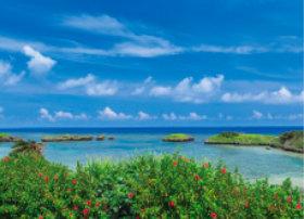 画像:8月 色表島 星砂の浜(沖縄) 四季水景 2018年カレンダー