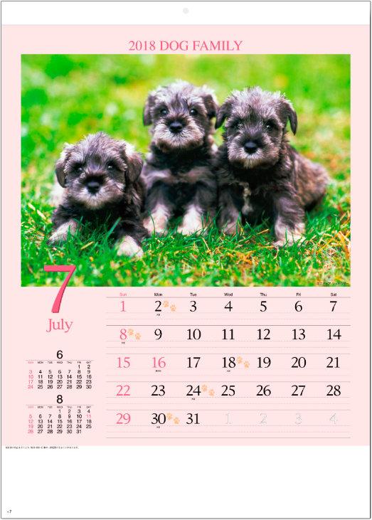 画像:7月 ミニチュア・シナウザー ドッグファミリー 2018年カレンダー