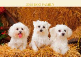 画像:9月 マルチーズ ドッグファミリー 2018年カレンダー