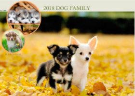 画像:12月 チワワ ドッグファミリー 2018年カレンダー