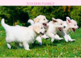 画像:1月 ゴールデン・レトリーバー ドッグファミリー 2018年カレンダー