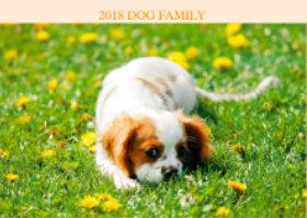 画像:3月 キャバリア・キング・チャールズ・スパニエル ドッグファミリー 2018年カレンダー