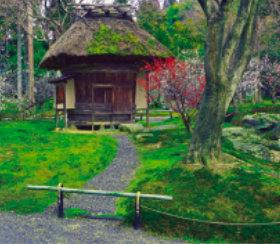 画像:1-2月 しょうざん(京都) 庭の心 2018年カレンダー
