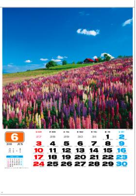 画像:6月 深山峠(北海道) 美しき日本 2018年カレンダー