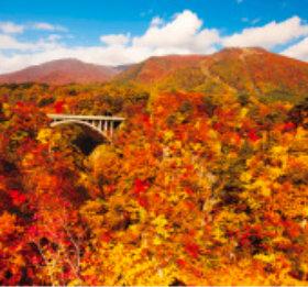 画像:11月 鳴子峡(宮城) ワイドニッポン十二選(フィルムカレンダー) 2018年カレンダー